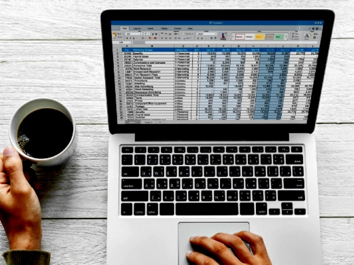 Man using Microsoft Excel